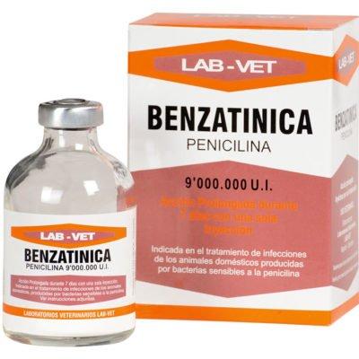 Benzatinica antibiótico para ovinos, caprinos porcinos y caninos