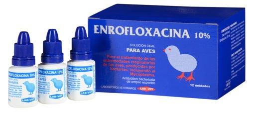 Enrofloxacina antibiótico para aves perros y gatos